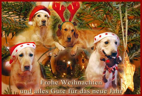 Weihnachtsgrüße Jagdlich.Inghean Bhuidhe Golden Retriever